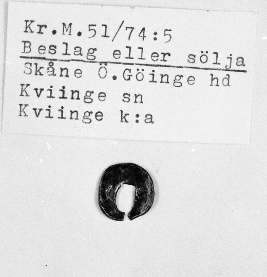 KrM51Y74_5.jpg
