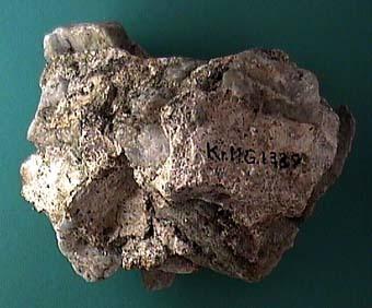 KRMG1339.JPG