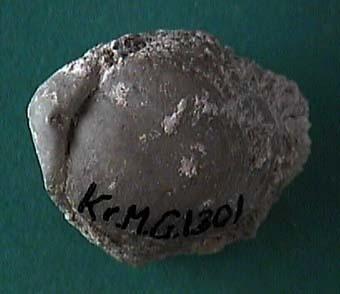 KRMG1301.JPG