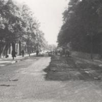 KrM_KDCF001965.jpg